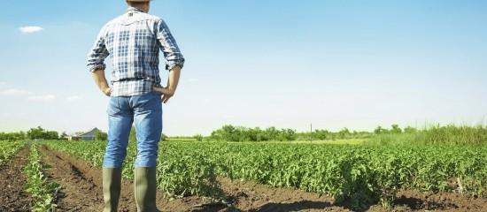 Lorsqu'il exerce son droit de reprise, le propriétaire de terres agricoles louées à un exploitant doit mentionner expressément dans le congé le cadre, sociétaire ou individuel, dans lequel le repreneur envisage d'exploiter les terres objet de la reprise.