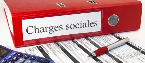 La réduction générale des cotisations sociales patronales s'applique sur les salaires inférieurs à 1,6fois le Smic annuel.